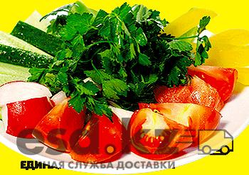 svezhiy