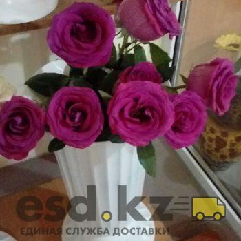rozy-yarko-rozovye-pink-floyd
